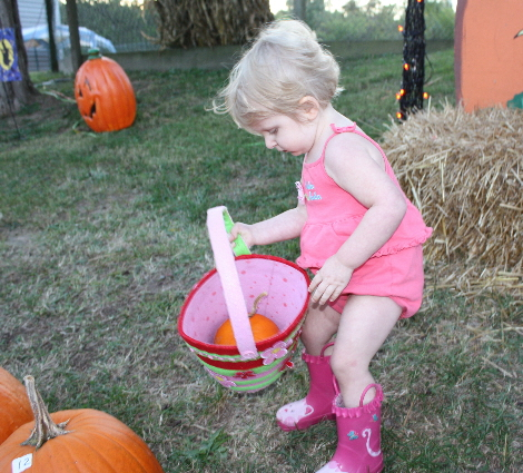 Pumpkin Patch 034