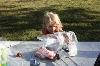 9-10-2010 Shenandoah Cabin Vacation-1-85