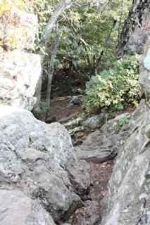 9-10-2010 Shenandoah Cabin Vacation-1-84