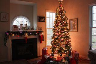 Christmas 2010 (1 of 1)-2