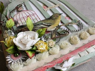 Birdcage Album-1-11