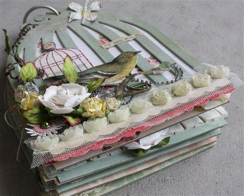 Birdcage Album-1-2