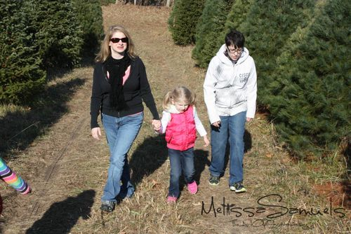 Christmas Tree 2012 (1 of 1)-24