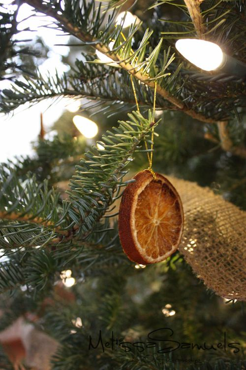 Ornament (1 of 1)-6